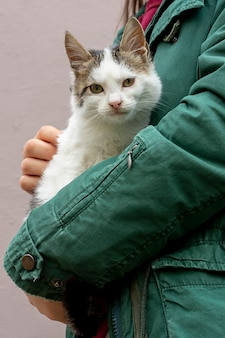 Крупным планом кошка сидит на руках владельца