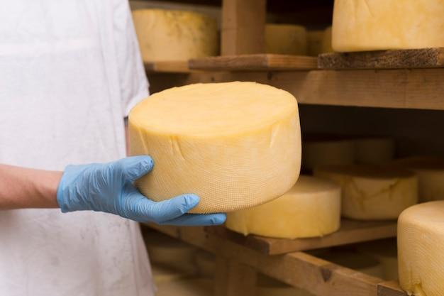 チーズロールのクローズアップを抱きかかえた