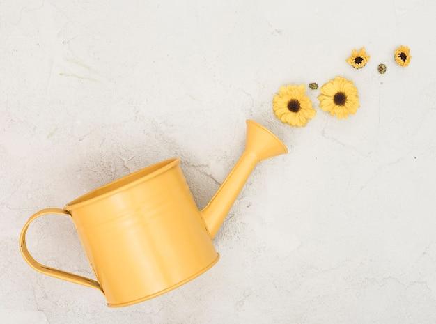 水まき缶と小さな黄金のヒナギクの配置