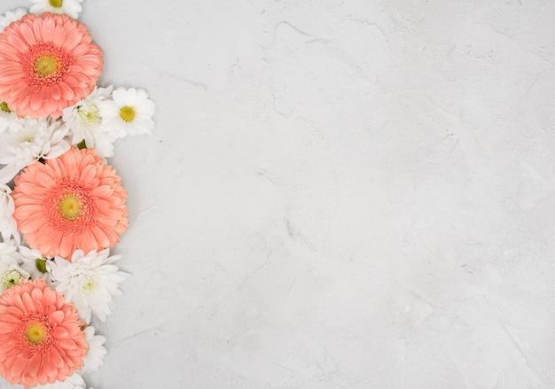 ヒナギクとガーベラの花を持つ空間の背景をコピーします