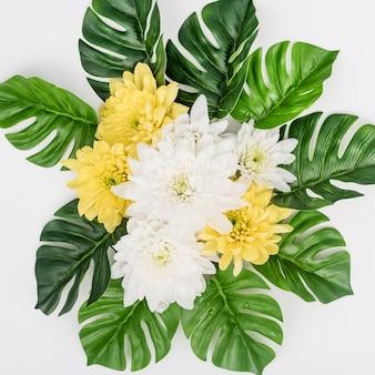 Листья монстера и белые с желтыми цветами