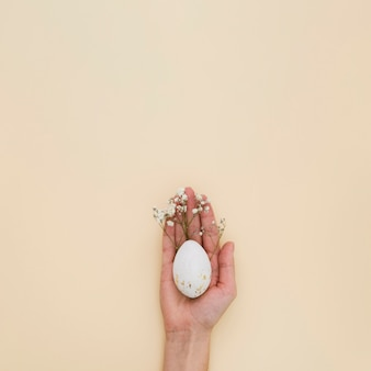 Плоская рука держит пасхальное яйцо с гипсофила и копией пространства