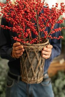 Опытный флорист держит красные растения крупным планом