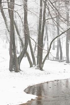 Снежный зимний пейзаж с деревьями и рекой