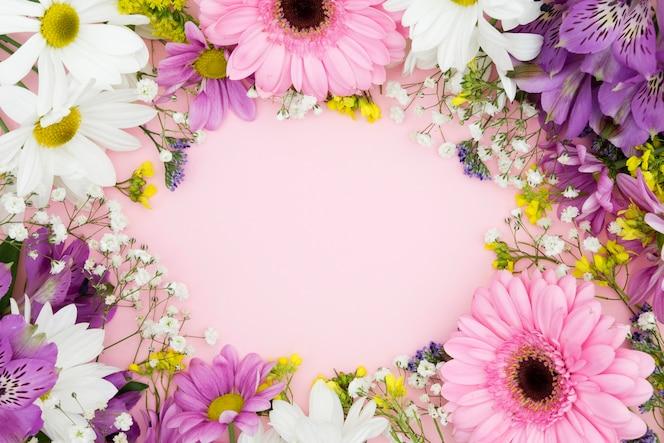 Вид сверху цветочная рамка с розовым фоном