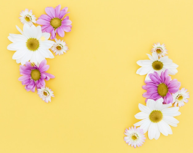 Вид сверху цветочная рамка с желтым фоном