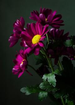 高角度のカラフルな春の花