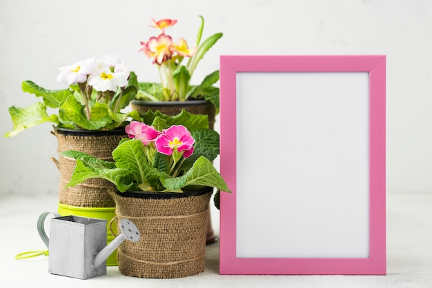 Рамка рядом с цветочными горшками