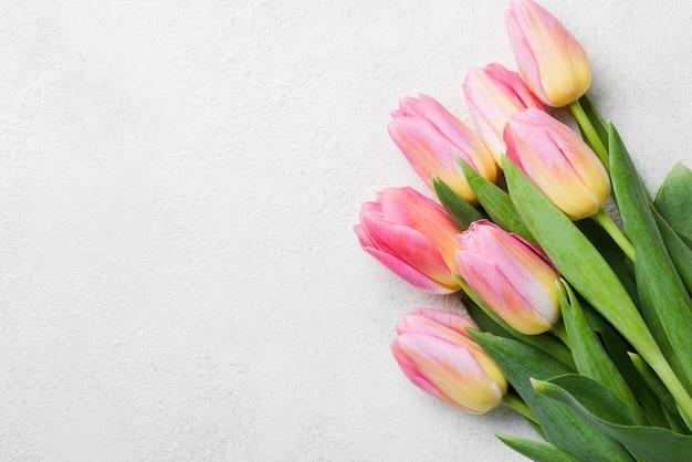 コピースペースチューリップ花束