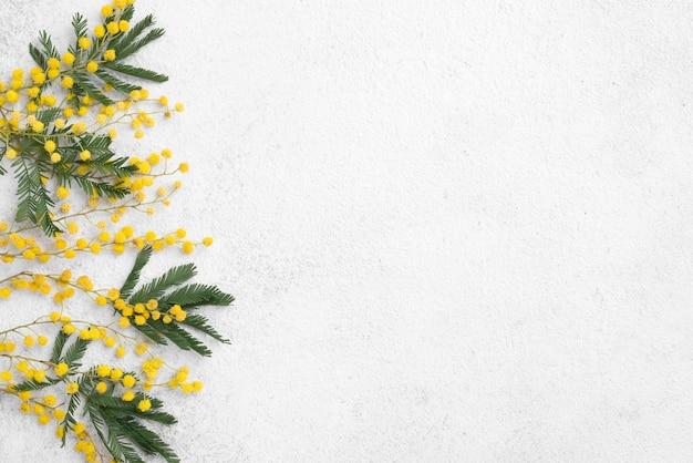 Цветы ветки на столе