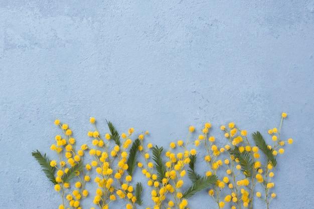コピースペースの春の花の枝