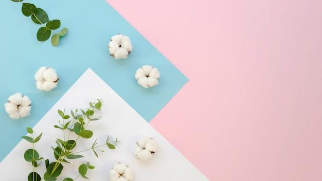 綿のアイテムと葉のあるフラットレイフレーム