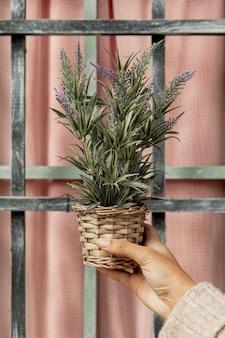 鍋に植物を保持しているクローズアップの女性