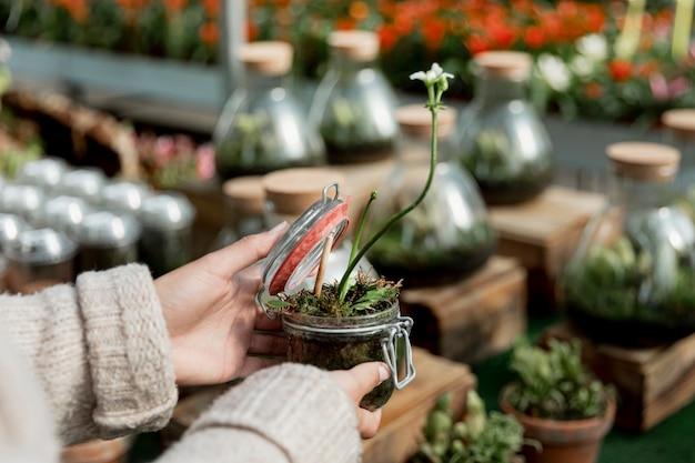 瓶で成長している植物を保持しているクローズアップの女性
