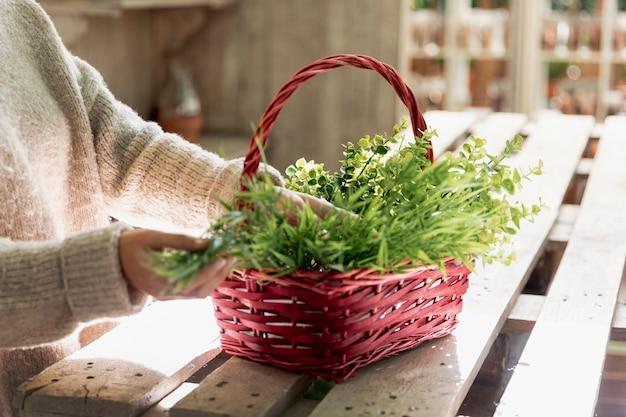 クローズアップ女性のバスケットに植物を配置