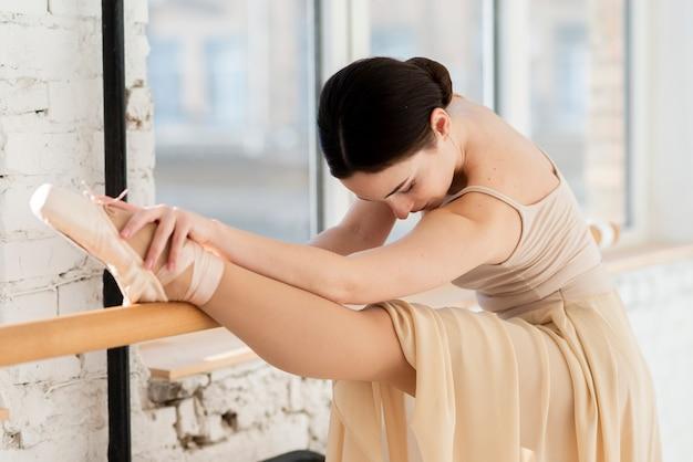 エレガントなバレエダンサーの肖像画