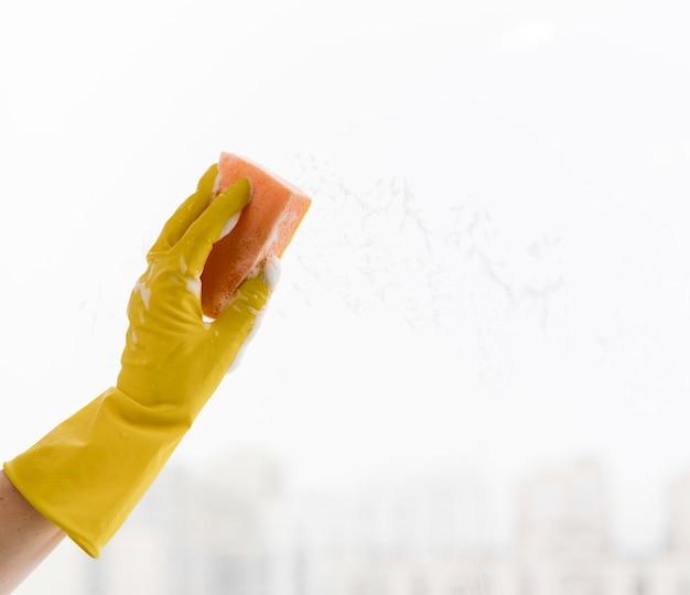 スポンジで掃除している窓