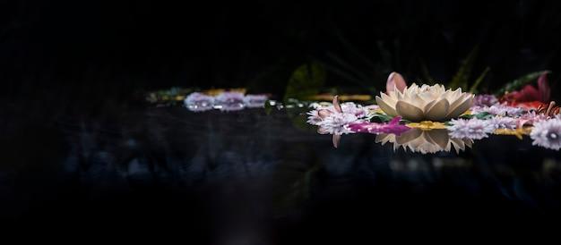 温泉の花の品揃え