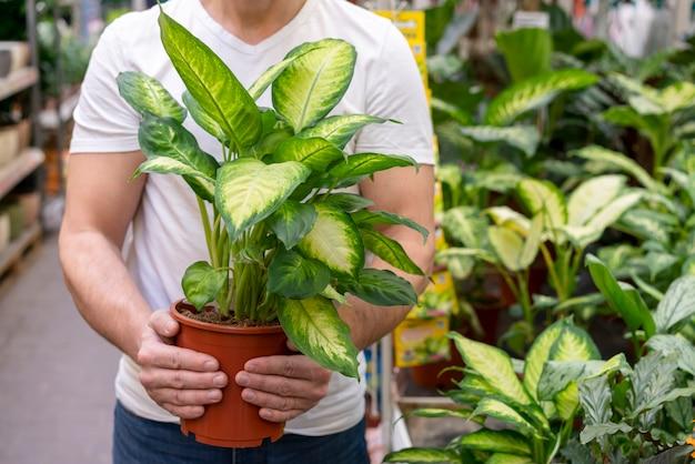 Вид спереди мужчина держит домашнее растение