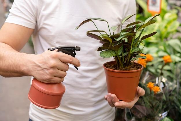 Крупным планом мужчина держит домашнее растение