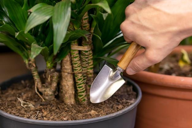 Крупным планом мужчина ищет растения