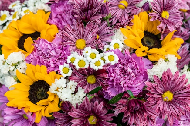Крупный план разноцветных цветов