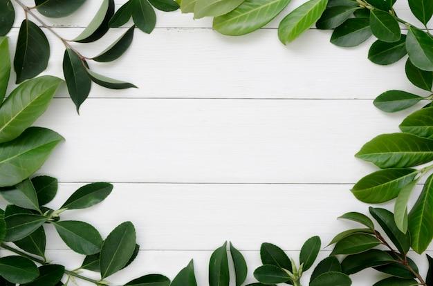 Вид сверху листьев концепции с деревянным столом
