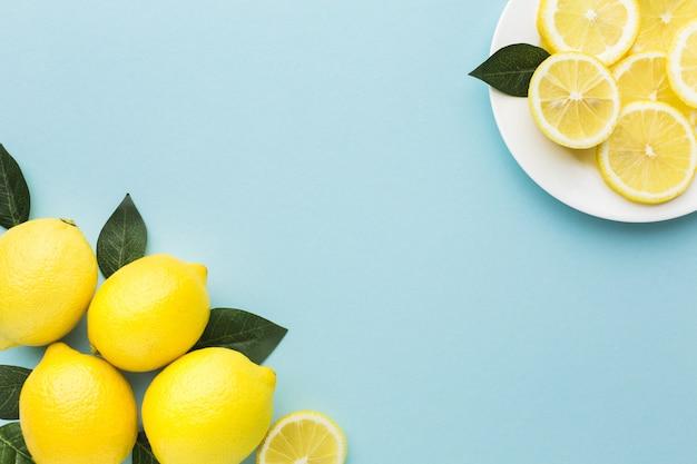 Плоская планировка лимонов с копией пространства