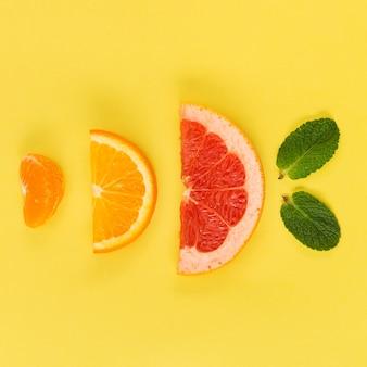 柑橘類のスライスの配置