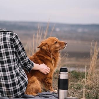 自然の中でかわいい犬をクローズアップ