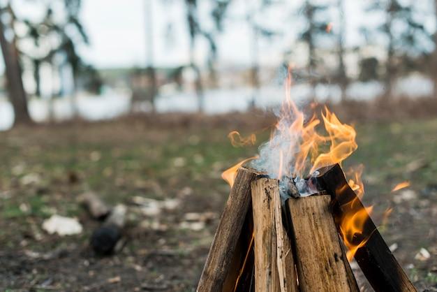 炎でたき火をクローズアップ