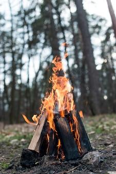 Низкий угол костра с пламенем
