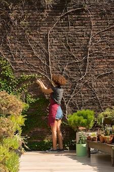 植物の世話をする若い女性
