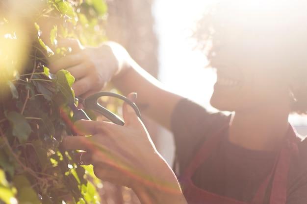 Боком молодая женщина заботится о растении
