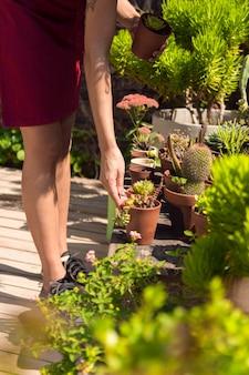 Боком женщина заботится о своих растениях