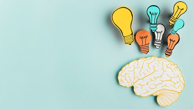 電球コレクションと紙の脳