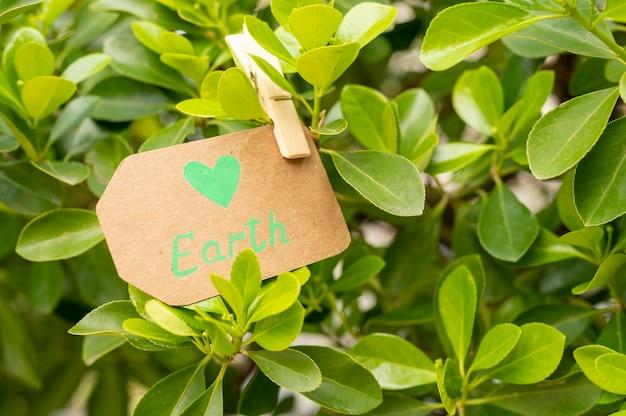 葉のクローズアップ地球サイン