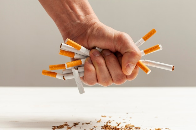 タバコを吸うウサギ