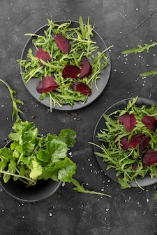 暗い皿の上から見る自家製サラダ