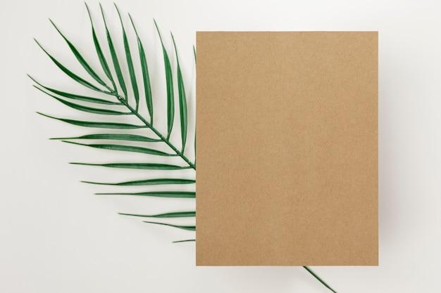 Вид сверху пальмовый лист с копией пространства