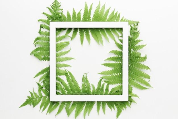 Вид сверху рамы с концепцией листьев