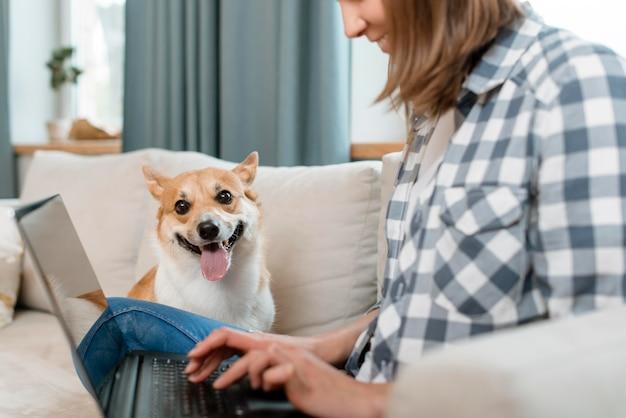 Вид сбоку женщины, работающей на ноутбуке со своей собакой на диване