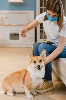 犬に紐とハーネスを置く女性