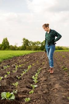 野菜を収穫する女性