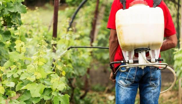 Вид сзади фермерского полива растений