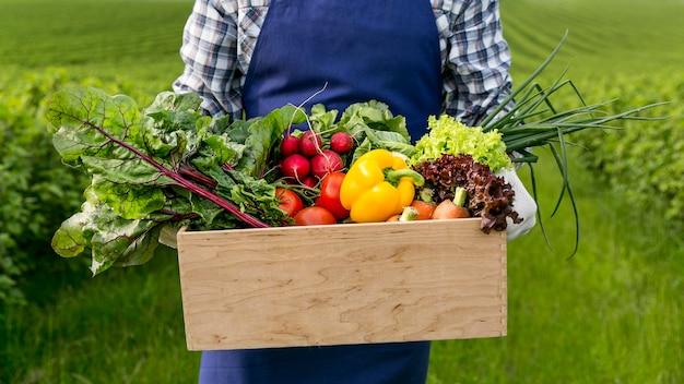 Крупным планом мужчина держит корзину с овощами