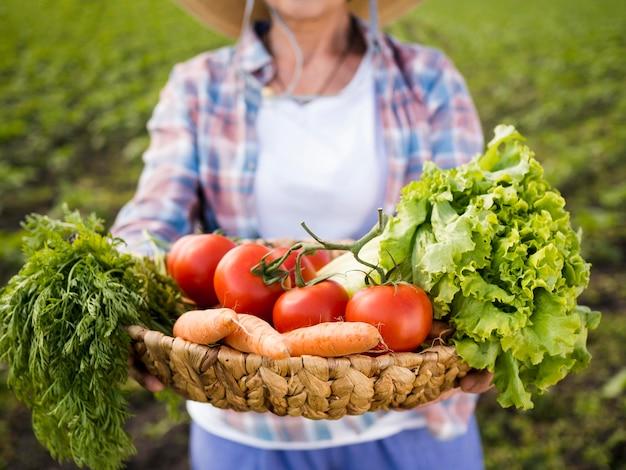 Женщина держит корзину, полную овощей крупным планом