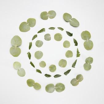 緑の葉で作られたトップビューフレーム