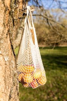 木の上に置いた袋に入った果物