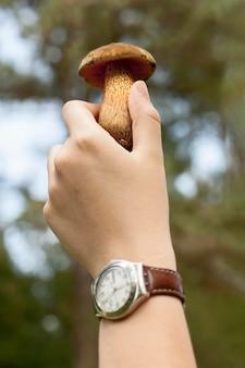 Макро рука держит гриб